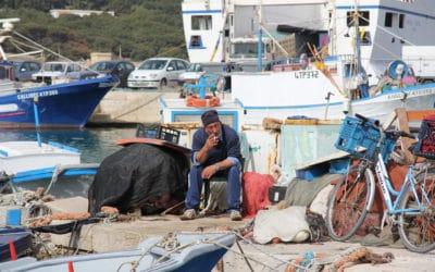 Ägadische Inseln, Favignana-Fischerhafen (1)