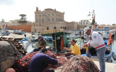 Ägadische Inseln, Favignana-Fischerhafen (3)