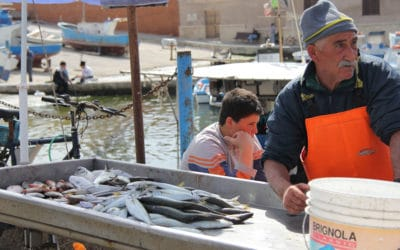 Ägadische Inseln, Favignana-Fischerhafen (5)