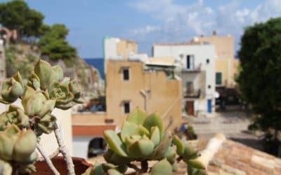 Ferienhaus Sant' Elia, Dachterrasse mit Meerblick(4)