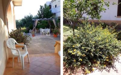 Ferienhaus Selinunte Garten (2)