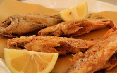 Fischrestaurant in Porticello, Santa Flavia (4)