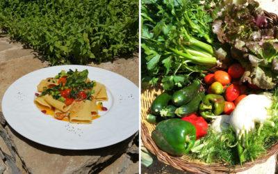 Restaurant Agriturismo Menfi (3)