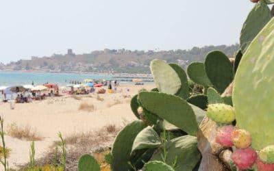 Sandstrand Portopalo (5)