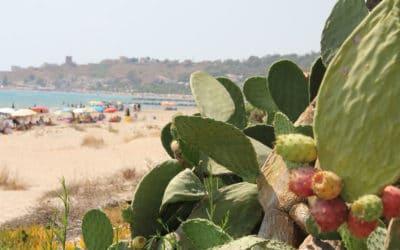 Sandstrand Portopalo (6)