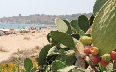 Sandstrand Portopalo im Sommer (1)