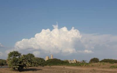 Selinunte, griechische Tempelanlage (13)