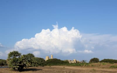 Selinunte, griechische Tempelanlage (39)