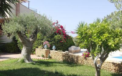 Villa Portopalo Garten (9)