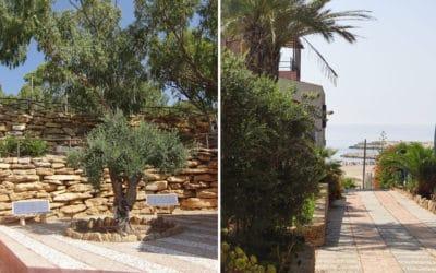 Villa Portopalo Garten und Zufahrt (1)