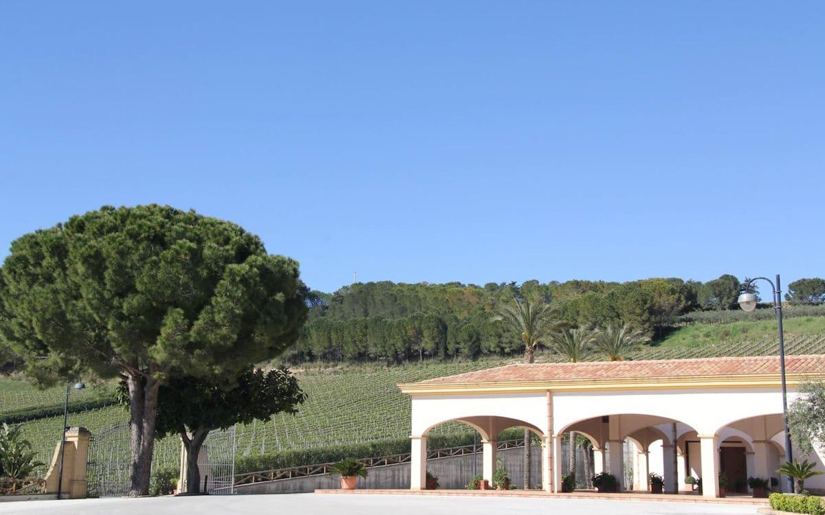 Weinprobe auf Sizilien (1)