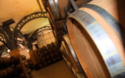Weinprobe auf Sizilien (5)